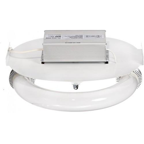 Индукционный светильник ITL-GL004 300W. Светильник для выращивания сатала, светильник для теплицы.