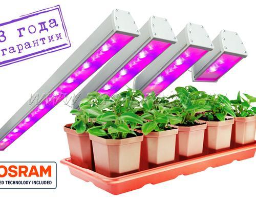 Светодиодный фитосветильник с универсальным спектром SSO-220/32-05.2(FGO-UP) Спектр светильников сбалансирован для универсального применения. Может использоваться как для досветки зеленых овощных культур, так и для плодоносящих. Оптимально - для досветки рассады перед высадкой в грунт и для выращивания цветочных культур. При использовании светильников данного типа растение имеет оптимальное соотношение интенсивности роста и набора зеленой массы. При этом очень хорошо развивается корневая система.