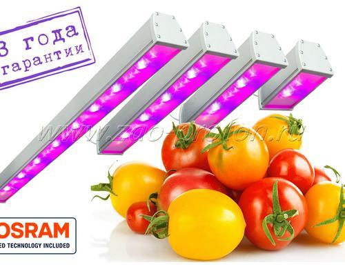 Спектр светильников содержит большую составляющую гипер красного (HyperRed 660 нм) спектра. Предназначены для досветки плодоносящих культур, требовательных к качеству освещения - огурцы, томаты, перец и т.п.