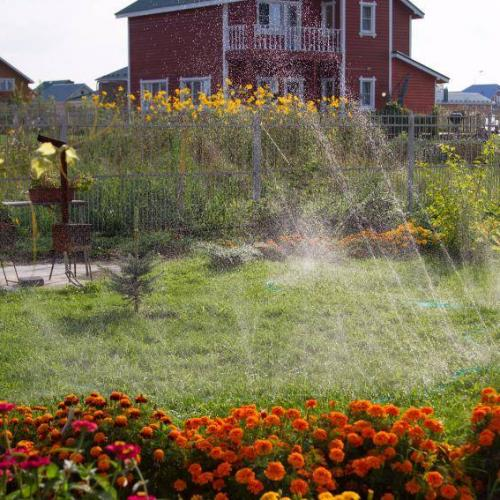 Перфорированнай шланг Дождеватель На любом дачном участке всегда найдутся сельскохозяйственные культуры, которым нужен частый и обильный полив. Обходить все растения с тяжелыми ведрами утомительное занятие. Оставлять шланг с включенной водой на весь день без присмотра – опасно, ведь струя воды может залить растения и размыть грядки и газоны.