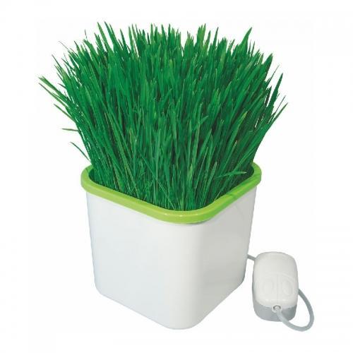 Мини гидропонная система АэроСад  АэроСАД Здоровья КЛАД - это настоящая находка для любителей полезного питания, садоводов, владельцев домашних питомцев, а также для интересного хобби - гидропонного выращивания растений.