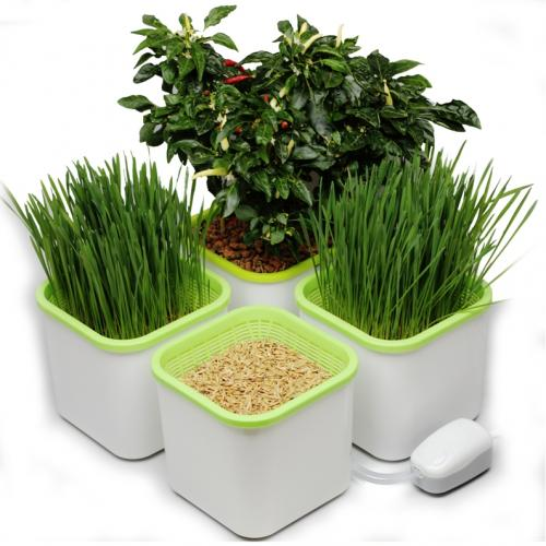 Мини гидропонная система АэроСад (4-х модульная) ??????? Находка для любителей полезного питания, садоводов, владельцев домашних питомцев, а также для интересного хобби - гидропонного выращивания растений.