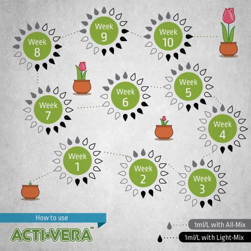 Acti-Vera BioBizz 0.25 L  Это эффективный иммуностимулятор для растений. Продукт изготавливается в Нидерландах компанией BioBizz. Принцип действия средства – стимуляция производительности фитоалексина. То есть соединений, которые активируют в растении защитную реакцию на пагубное воздействие окружающей среды.